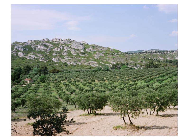 Paysages sensibles for Entretien jardin st remy de provence