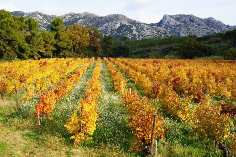 Les Alpilles en photos